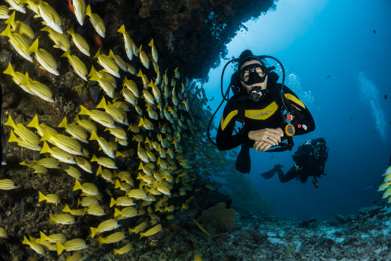 nov2 - Tre uundværlige ting til dykkerferien