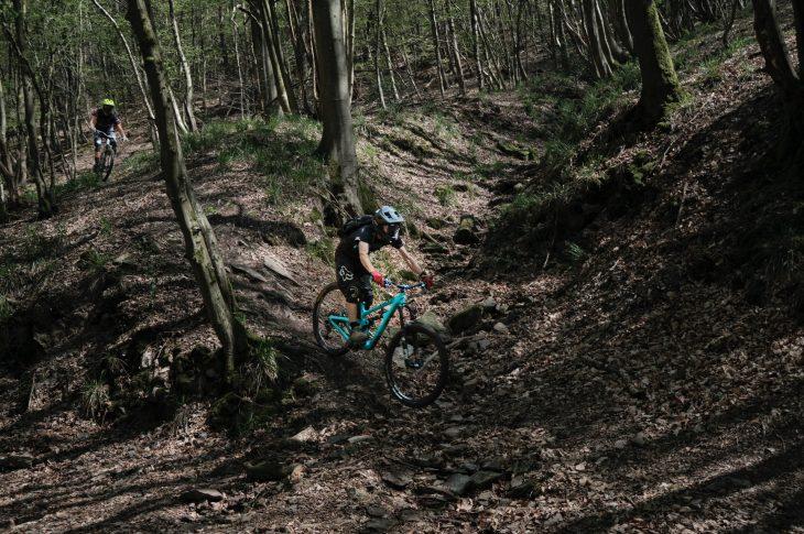 frans ruiter XZGNGLdsy6U unsplash 730x485 - Er du på udkig efter en ny mountainbike?